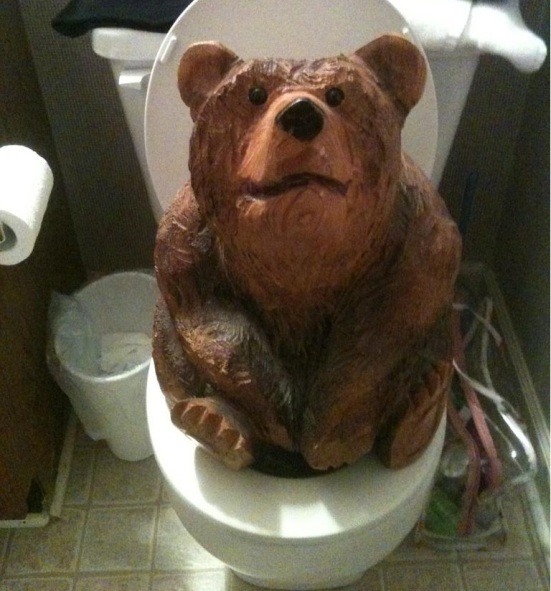 Does a Bear Shit in the Woods? No.