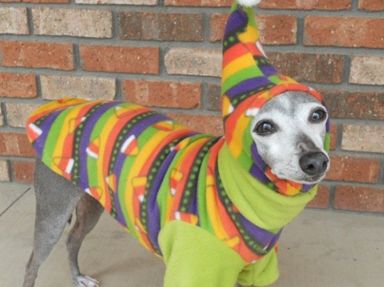 Candy Corn Halloween Dog Sweater with Hat and Glowing Pom Pom